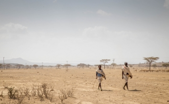 Horn of Africa drought puts 15 million in severe danger