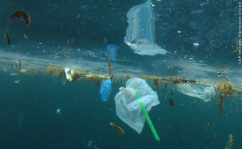European Parliament completes ban on single-use plastics